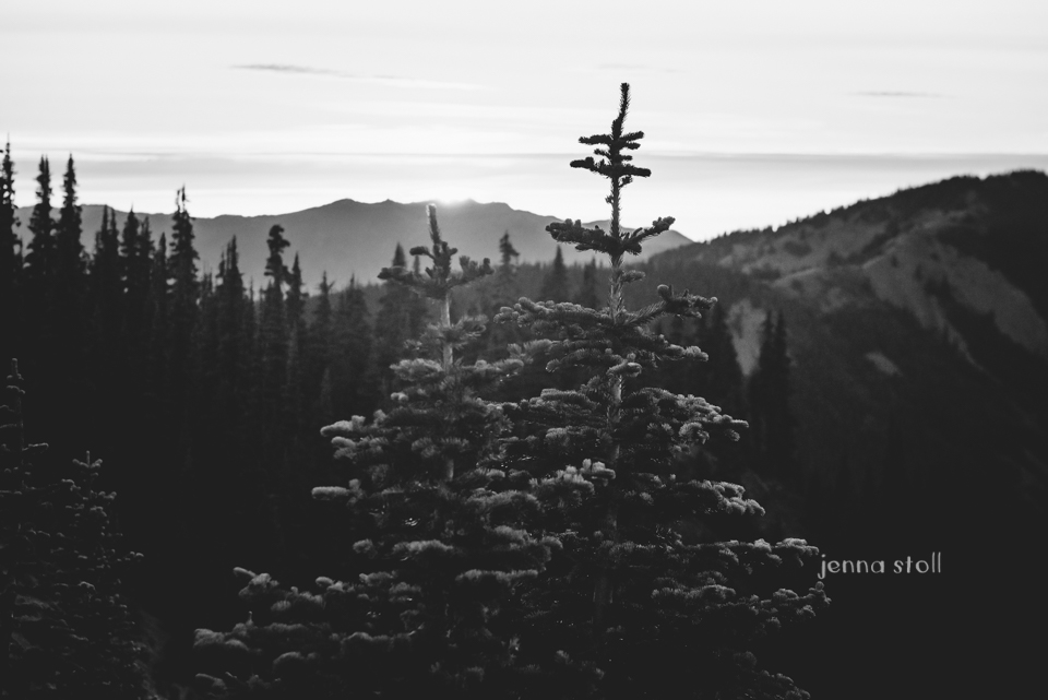 Jenna Stoll Photography_PNW-206.jpg