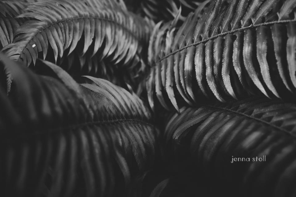 Jenna Stoll Photography_PNW-426.jpg