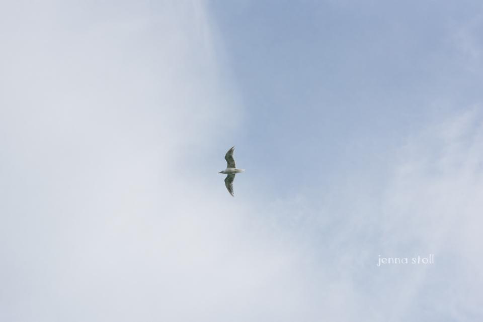 Jenna Stoll Photography_PNW-293.jpg