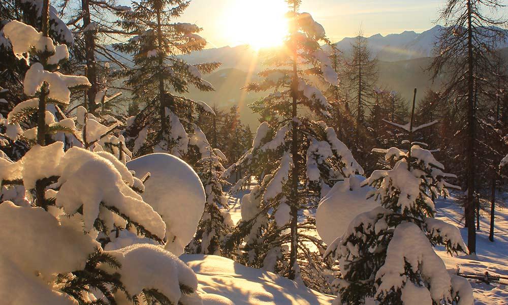 berghuette-winter-wald-sonnenuntergang.jpg