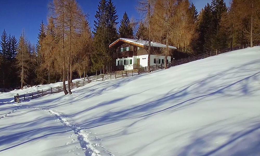 berghuette-weiss-winter-schnee-sonnig-wald.jpg