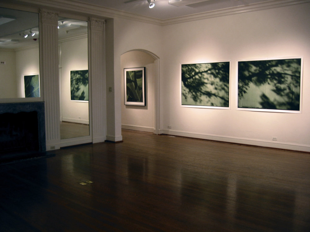 Installation, Barbara Davis Gallery, Houston, Texas 2005