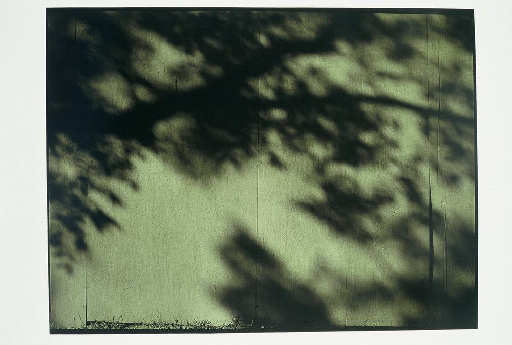 "10.20.03, P.M., AUSTIN, #1 1/2  49"" X 64"" Oil on silver gelatin 2003"