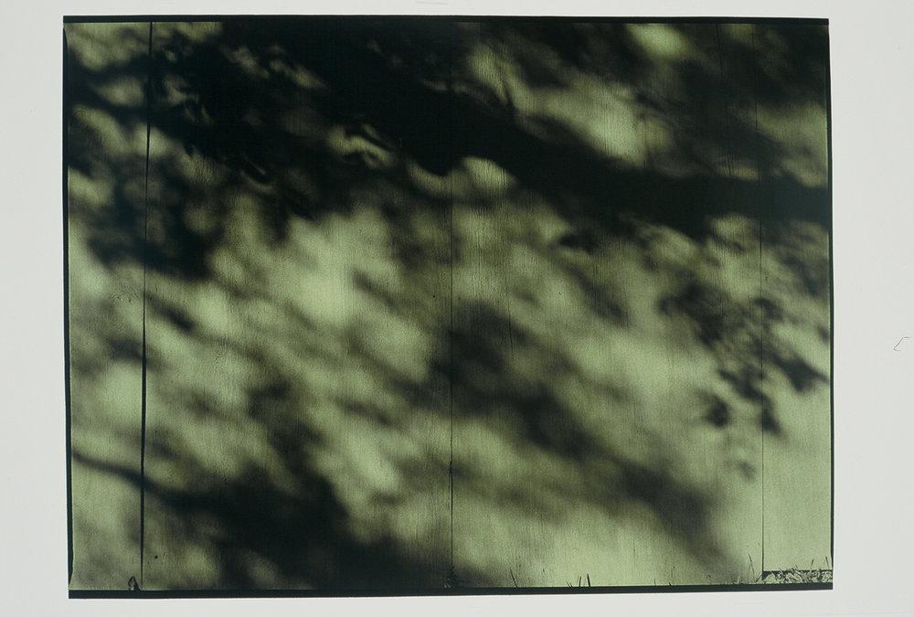 "10.20.03, P.M., AUSTIN, #4  49"" X 64"" Oil on silver gelatin 2003"
