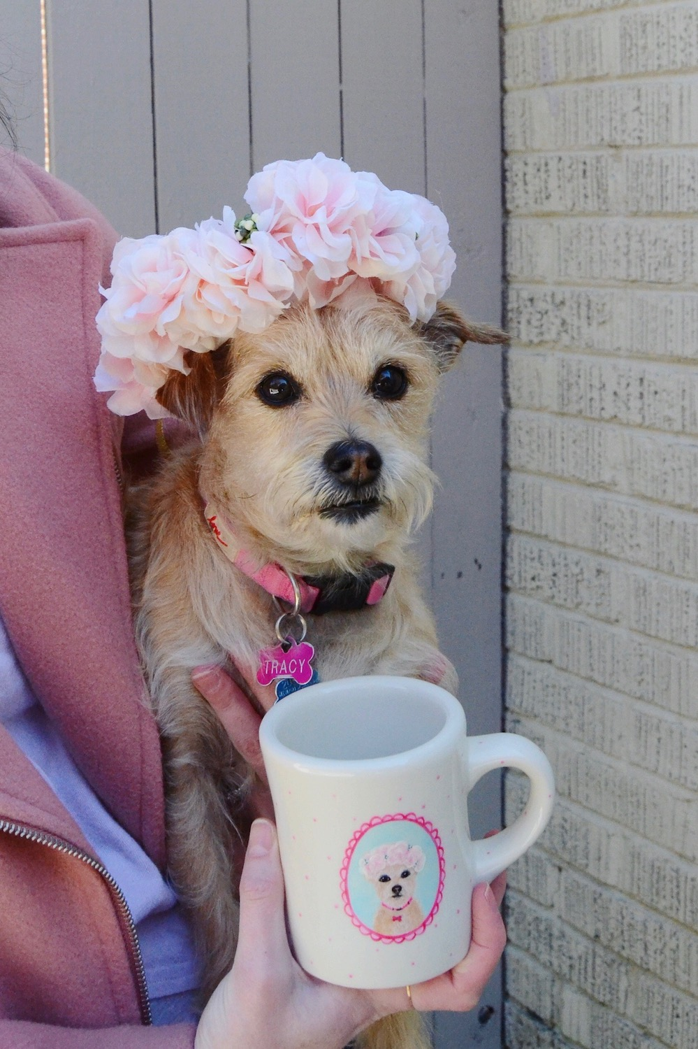 off the cuff custom pet mug.jpg