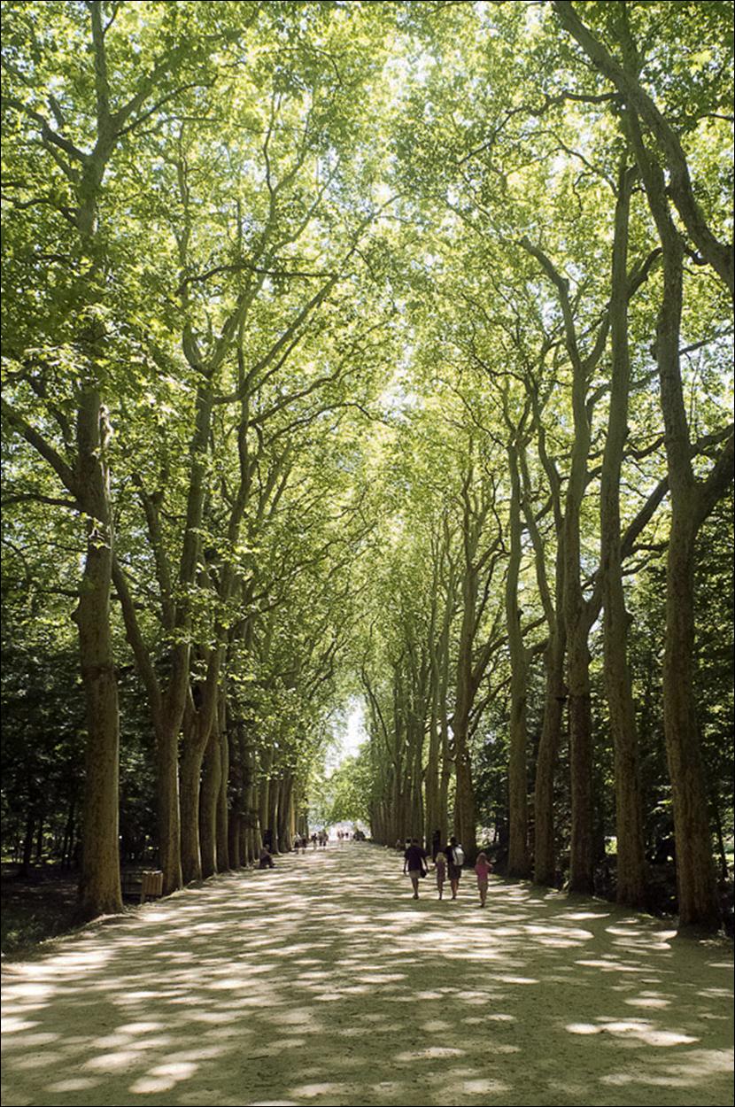 France.0125.jpg