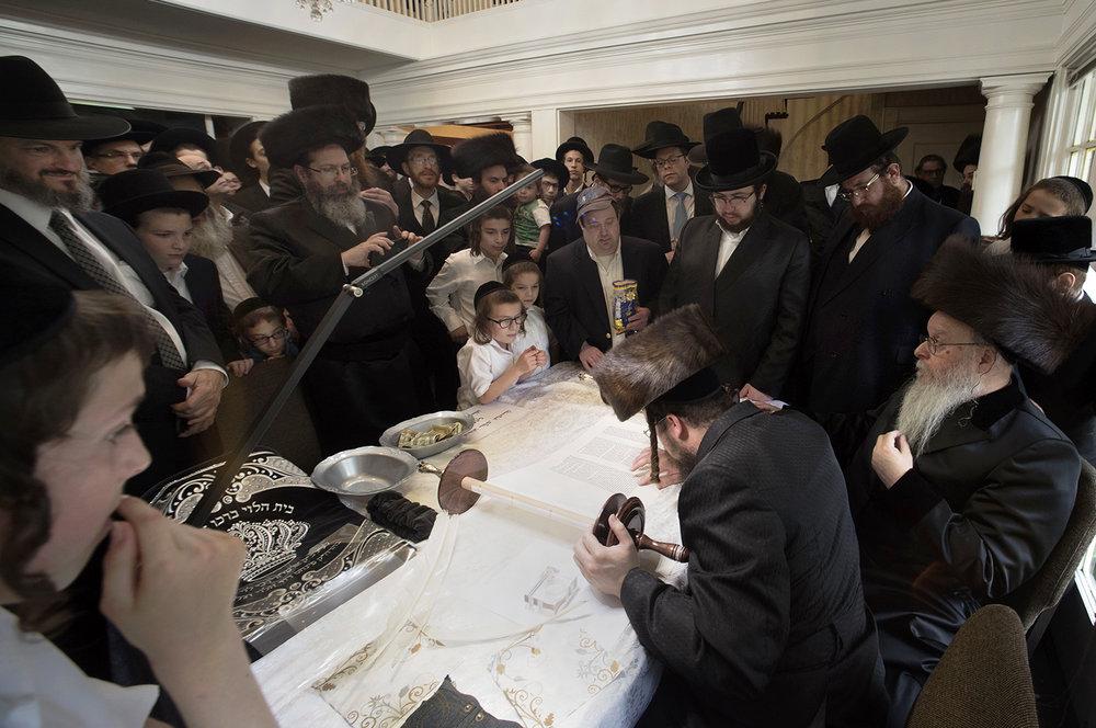 Torah01.jpg
