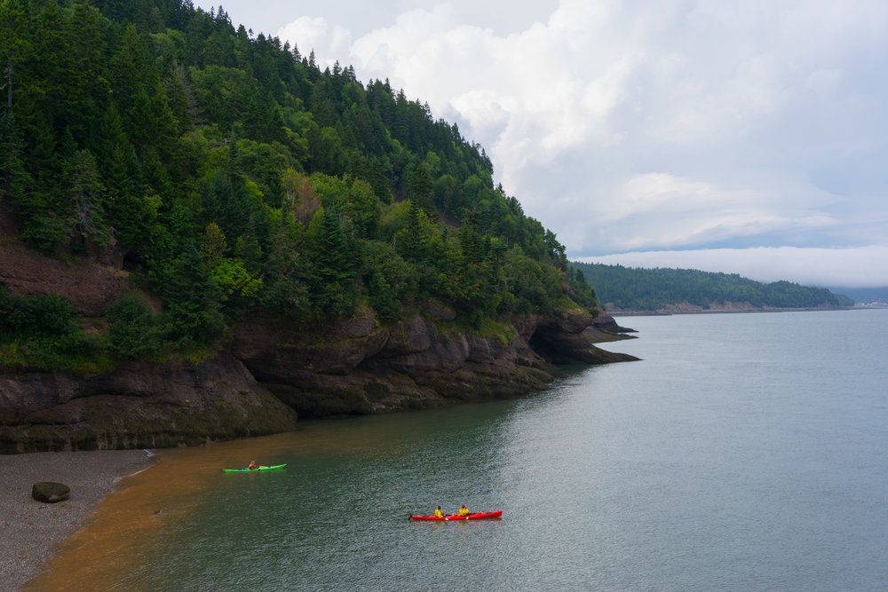 Top 5 Hikes in Fundy National Park