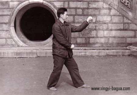 刘敬儒师父示範钻拳  Master Liu Jing Ru performing Zuan Quan (Drilling Fist).