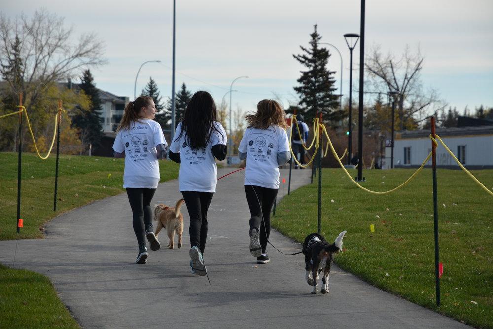 Outrun the Stigma Calgary 2017 Participants. Photo by Sarah Tao.