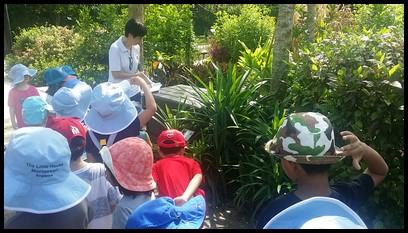 Mrs. Jo showed them the pandan leaves and how it is used to enhance flavour in rice dishes, desserts and cakes. The children were also given samples of pandan leaves which they passed around to smell and feel.