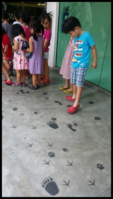 While walking to the next exhibit, the children observed that there were different animal footprints pointing them to the direction they had to walk to.