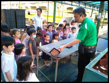The kids were shown how the seeds looked like after being soaked for 8 hours