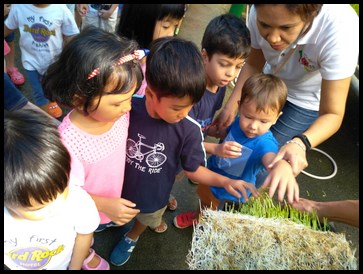 The children felt the texture of the compost