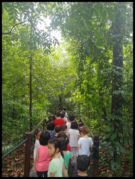 After the scavenger hunt, everyone took a leisurely stroll in the rainforest.