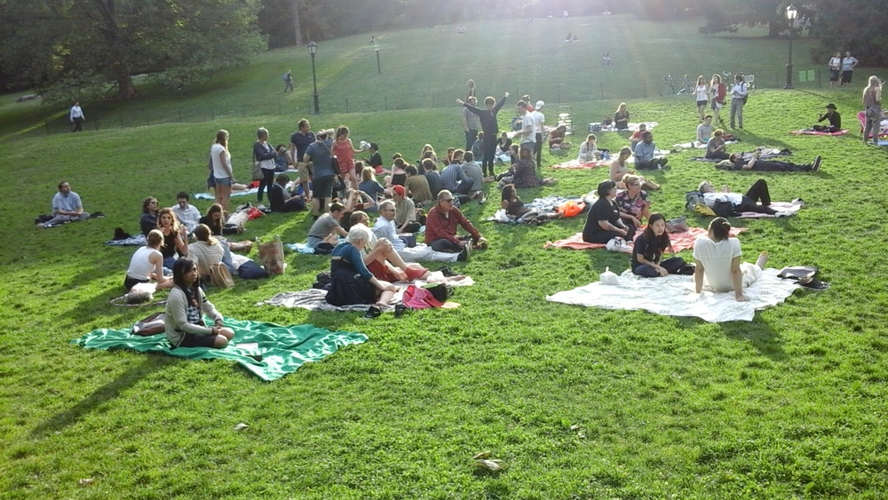 Films on the Green 3.jpg