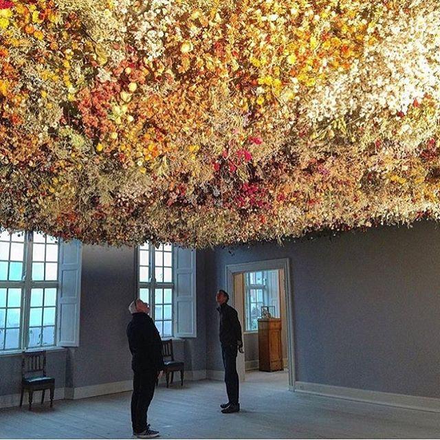 Incredible exhibition of @rebeccalouiselaw at Skovgaard Museum in Viborg, Denmark. 'Pride' 2017, is absolutely mesmerizing! #rebeccalouiselaw #pride #skovgaardmuseet #denmark #contemporaryart #flowers #installation #nofilter