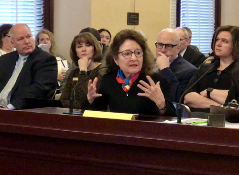 Professor Mary Ann Lee, Director of the Tanner Dance Program, testifying at the Public Education Appropriations Committee