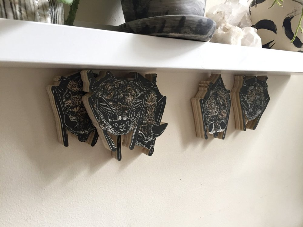 Set of 5 Pallid Bats $225.00