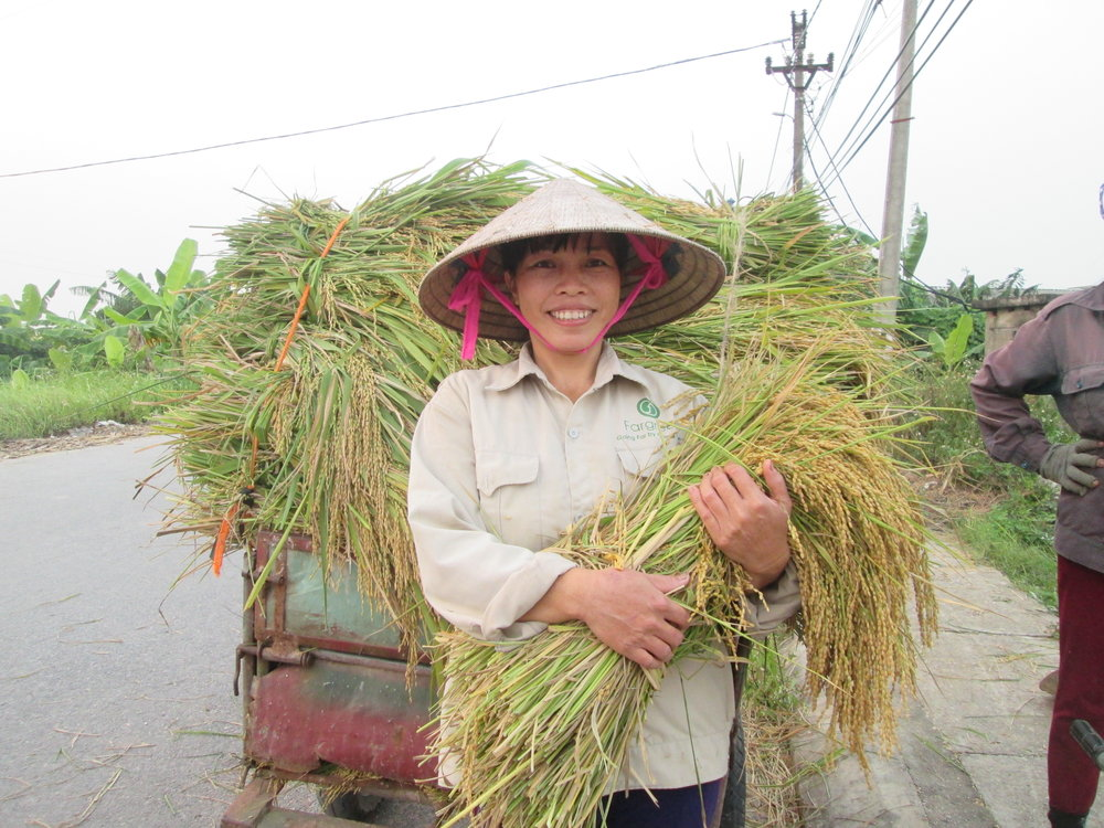 A Farmer in Fargreen Network: Tran Thi Hang