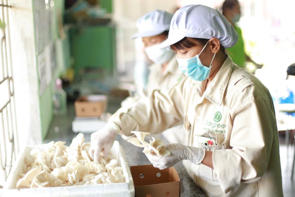 生産工場の見学 -