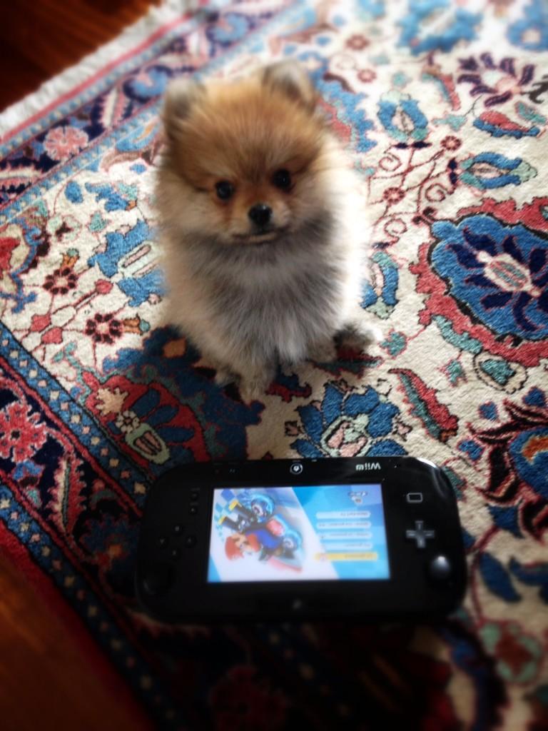 Il miglior amico dell'uomo (e del Wookiee): Mario Kart 8.