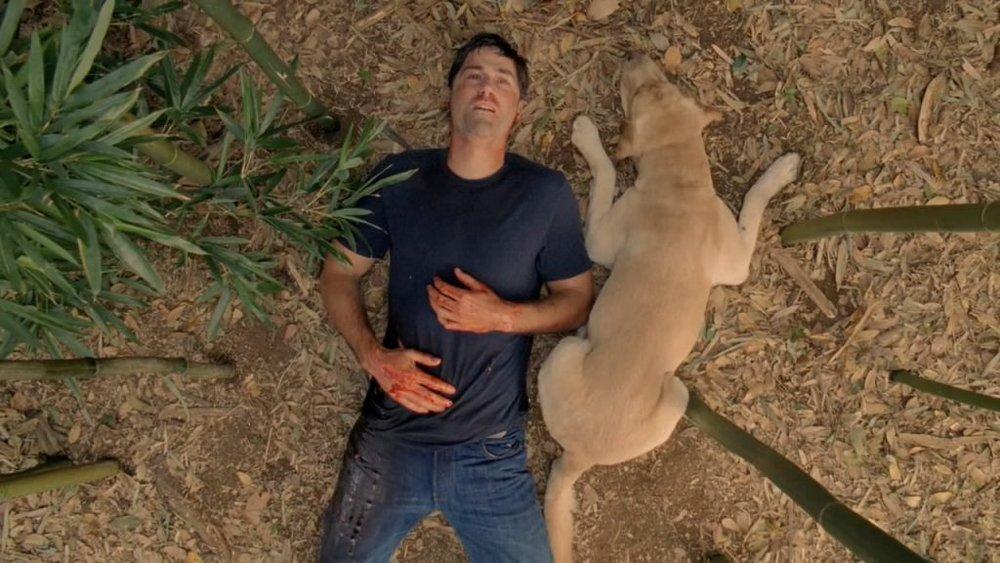 """Uno fra i frame più noti dell'episodio conclusivo di Lost, con la cosiddetta """"chiusura ad anello"""". Lost,infatti, inizia e finisce pressappoco in questo modo, con Jack disteso a terra."""