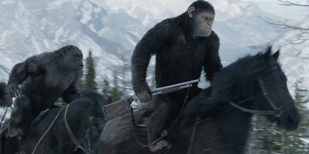 Mai far incazzare una scimmia munita di fucile a pompa.