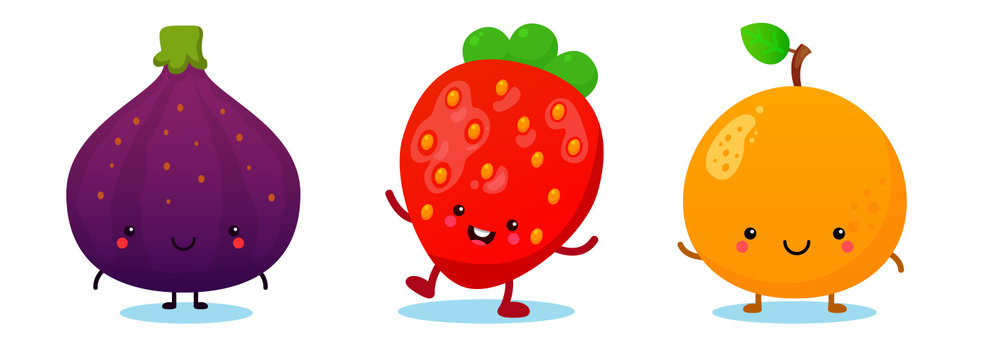 Fruit (Fig, Strawberry, Orange) - Vector Art