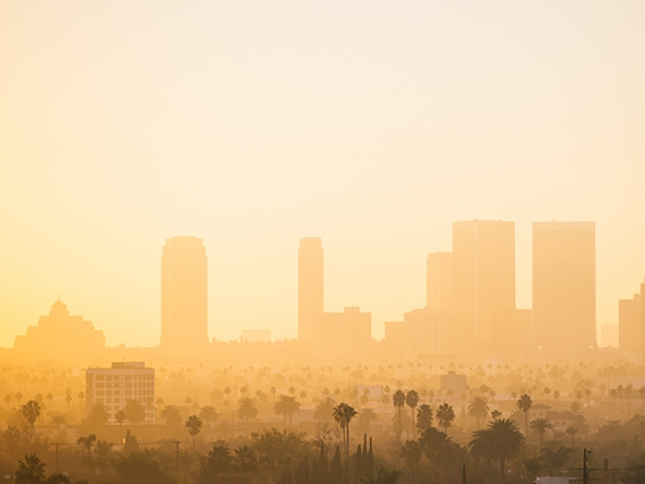 Landscape_Los Angeles United States.jpg