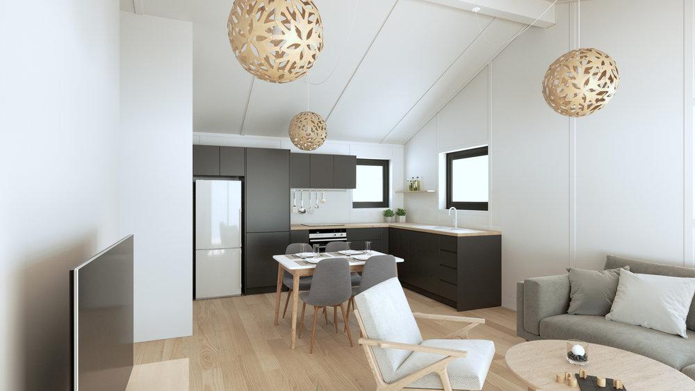 SMART 50 Living Area & Kitchen