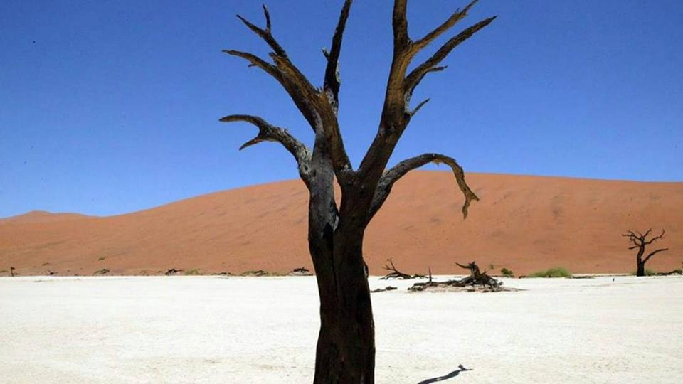 """Mission """"Seul dans le Namib"""""""