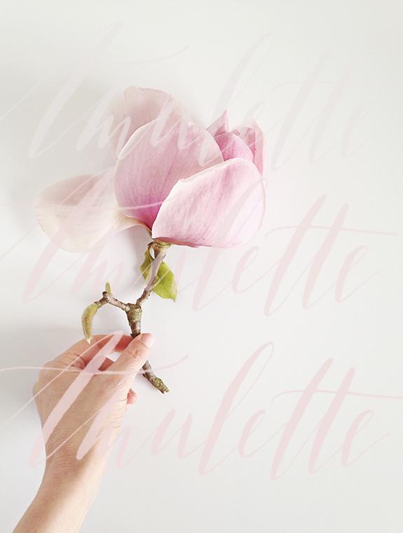 lettering-besotted-blog-calligrafile.jpg