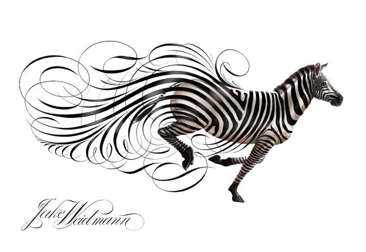 Jake Weidmann Zebra IPad Pro Apple Pencil Calligrafile