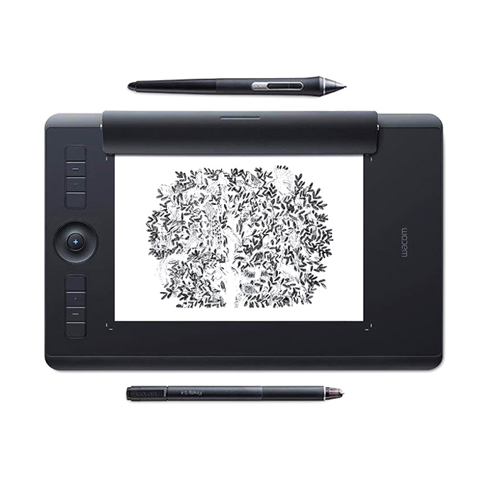 "<p><strong><a href=""http://amzn.to/2pzIi9u"" target=""_blank"">Wacom Intuos Pro Paper Tablet</a></strong>$350+</p>"