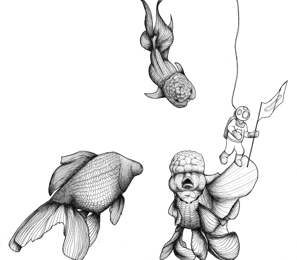 Goldfish and Diver