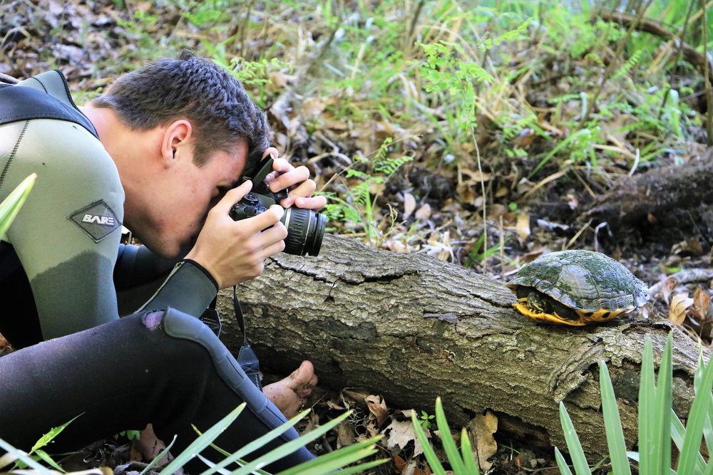 TBTY partner Andrew Farren photographing an adult female yellow-bellied slider (Trachemys s. scripta) at Ichetucknee Springs State Park (Columbia County, Florida). Photograph by George L. Heinrich.