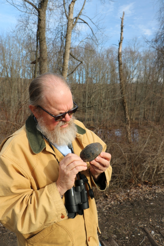 George L. Heinrich with a male spotted turtle (Clemmys guttata). An ephemeral wetland can be seen in the background. Photograph by Timothy J. Walsh.