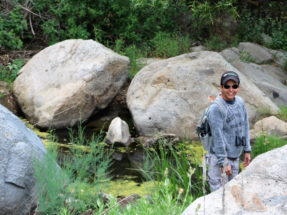 Lydia Salinas exploring western pond turtle ( Actinemys   marmorata ) habitat in Riverside County, California. Photograph by George L. Heinrich.