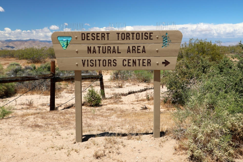 Entrance to the Desert Tortoise Natural Area (California City, California). Photograph by George L. Heinrich.