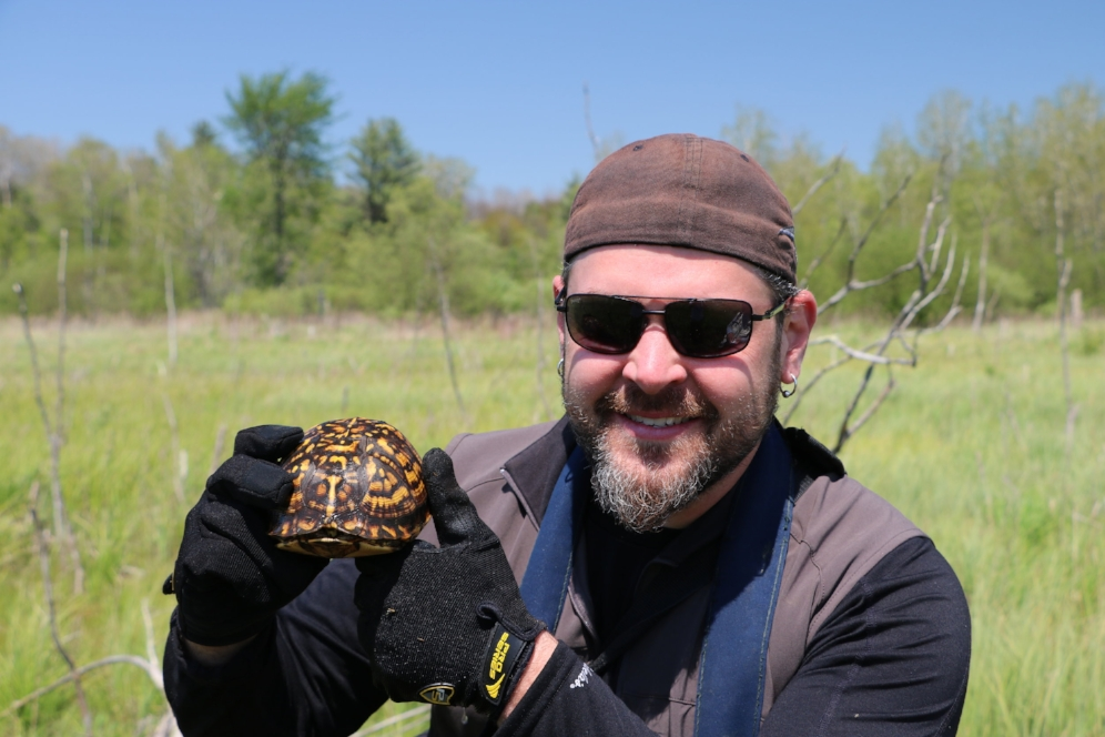 James Krause holding an eastern box turtle ( Terrapene c.   carolina ) in southwestern Michigan. Photograph by George L. Heinrich.