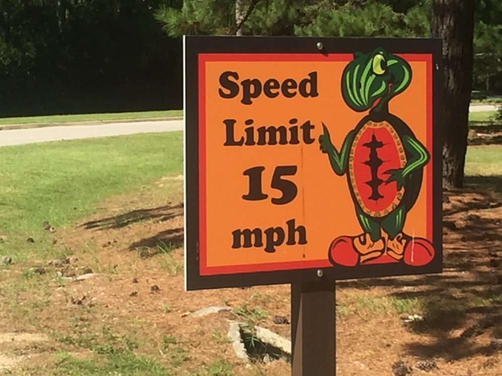 A quirky roadsign featuring the Alabama red-bellied cooter at the Five Rivers Delta Resource Center (Baldwin County, Alabama). Photograph by Timothy J. Walsh.