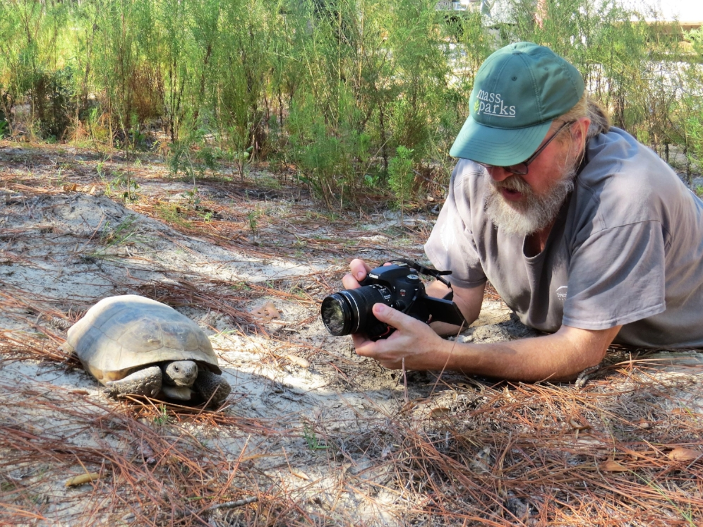 George L. Heinrich photographing an adult gopher tortoise ( Gopherus   polyphemus ) in the uplands of south-central Georgia. Photograph by Dirk Stevenson.