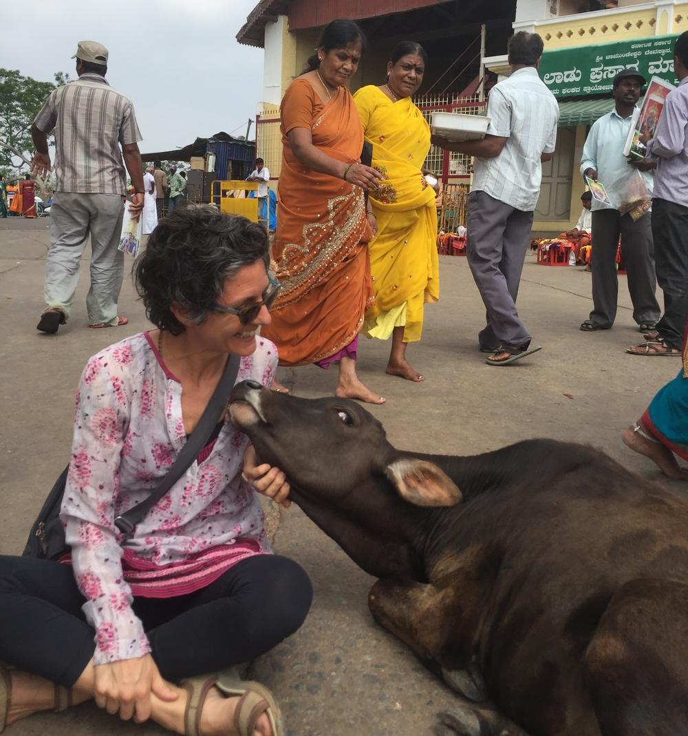 Mysore, 2016