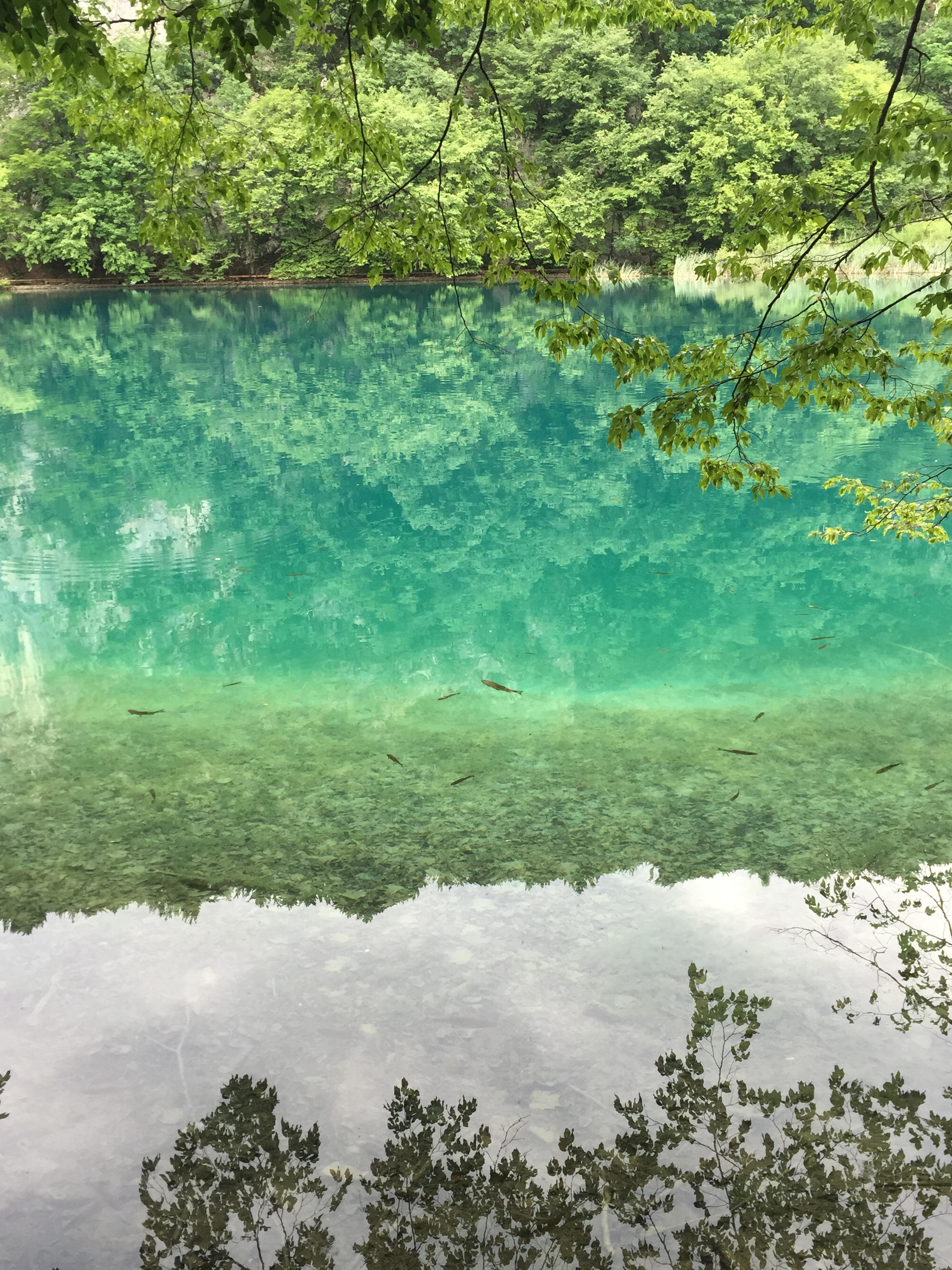 croatia plitvice 21