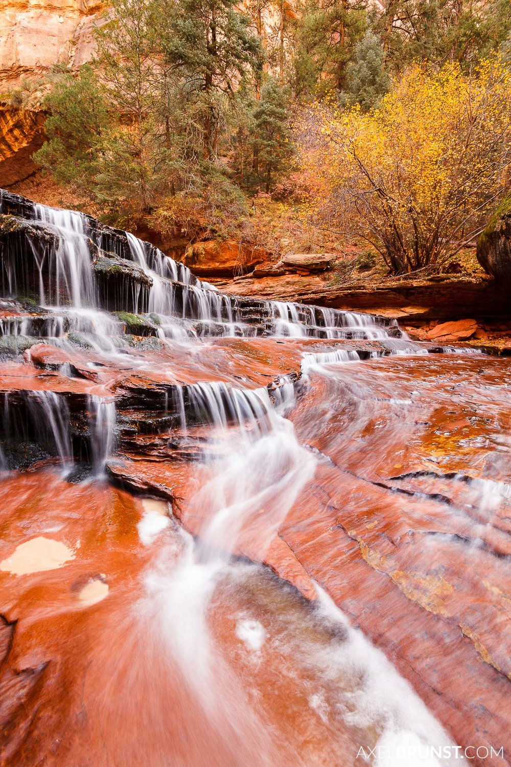 Zion-national-park-utah-3.jpg