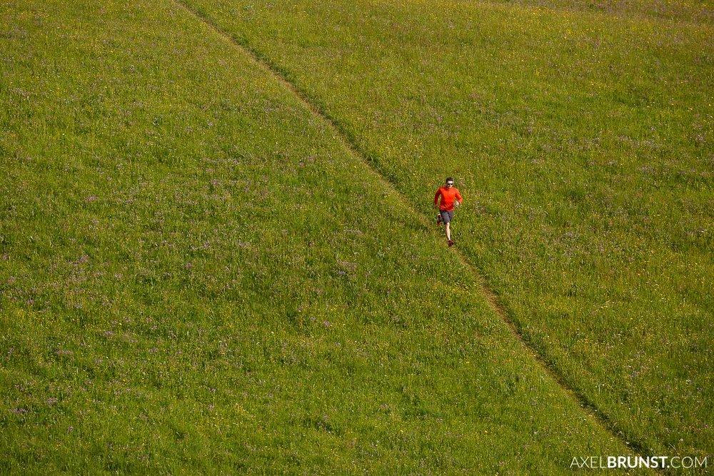 hohenzollern-trail-running-4.jpg