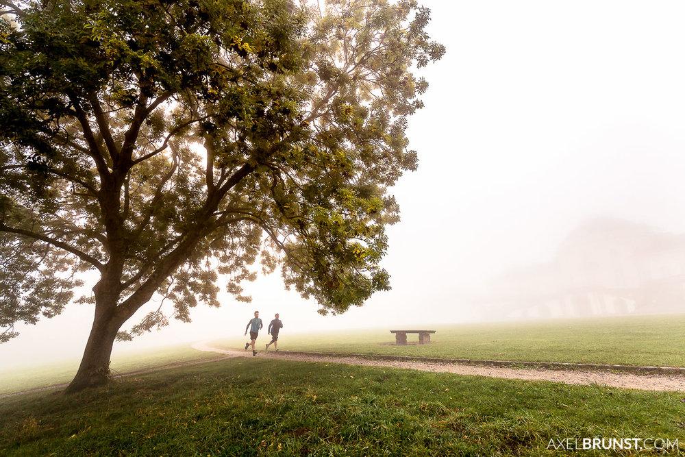stuttgart-solitude-running-4.jpg