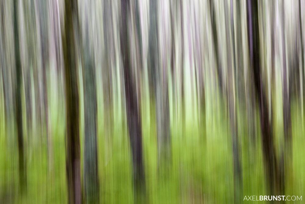 wicklow-national-Park-ireland-1.jpg