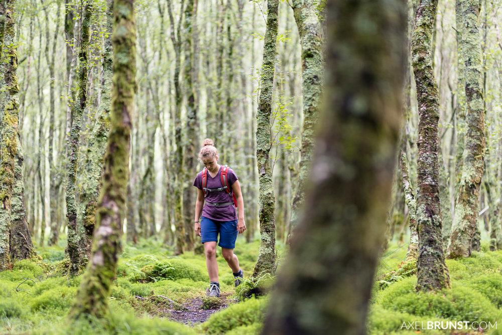 wicklow-national-Park-ireland-2.jpg